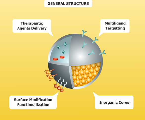 Figure three - general nanoparticles structure